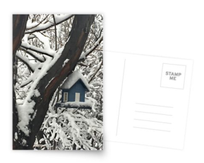 Snow covered bird house postcard © 2018 ericarobbin.com | All rights reserved.